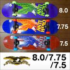 ANTIHERO【アンタイヒーロー】コンプリート スケートボード RISE ABOVE 7.5/7.75/8.0