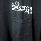 Emerica【エメリカ】Tシャツ DESTROY EVERYTHING SIGN (Black)サイズ:L